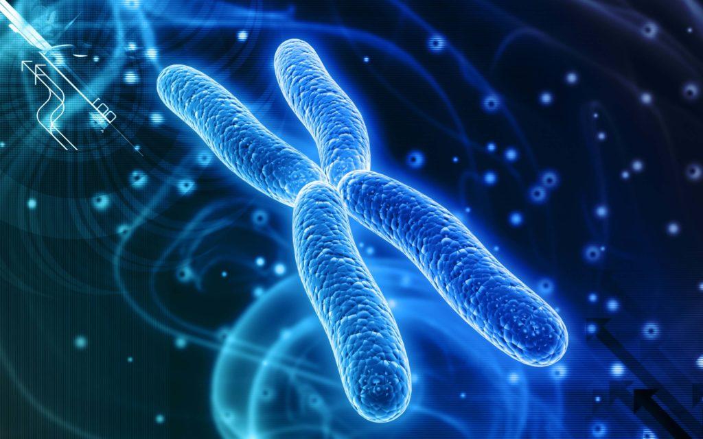 Как сделать тест ДНК на отцовство : что нужно для анализа и его цена